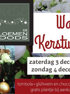 flyer oase kerst 2016-page1