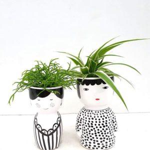 Schattige madammekes met leuke kamerplantjes